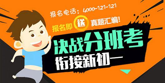 2017爱智康杭州分班考课程