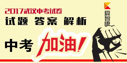 2017武汉中考试卷答案解析