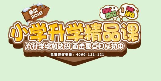 备战2018小学升学精品课