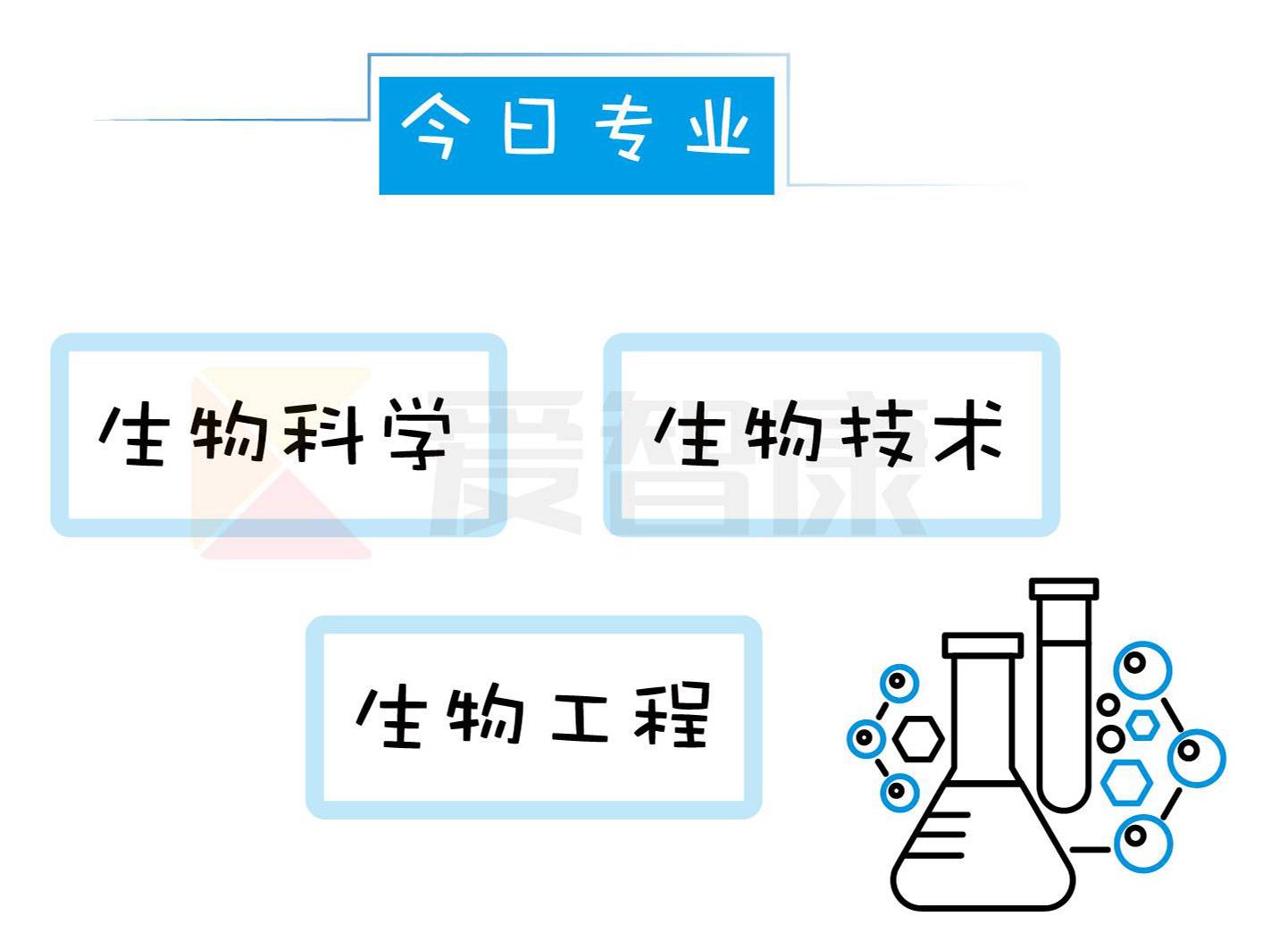 生物科学生物技术生物工程