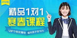 2018爱智康寒春课程