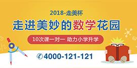 2017走美杯课程