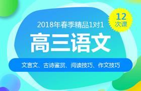 2018年春季1对1课程大纲:高三语文