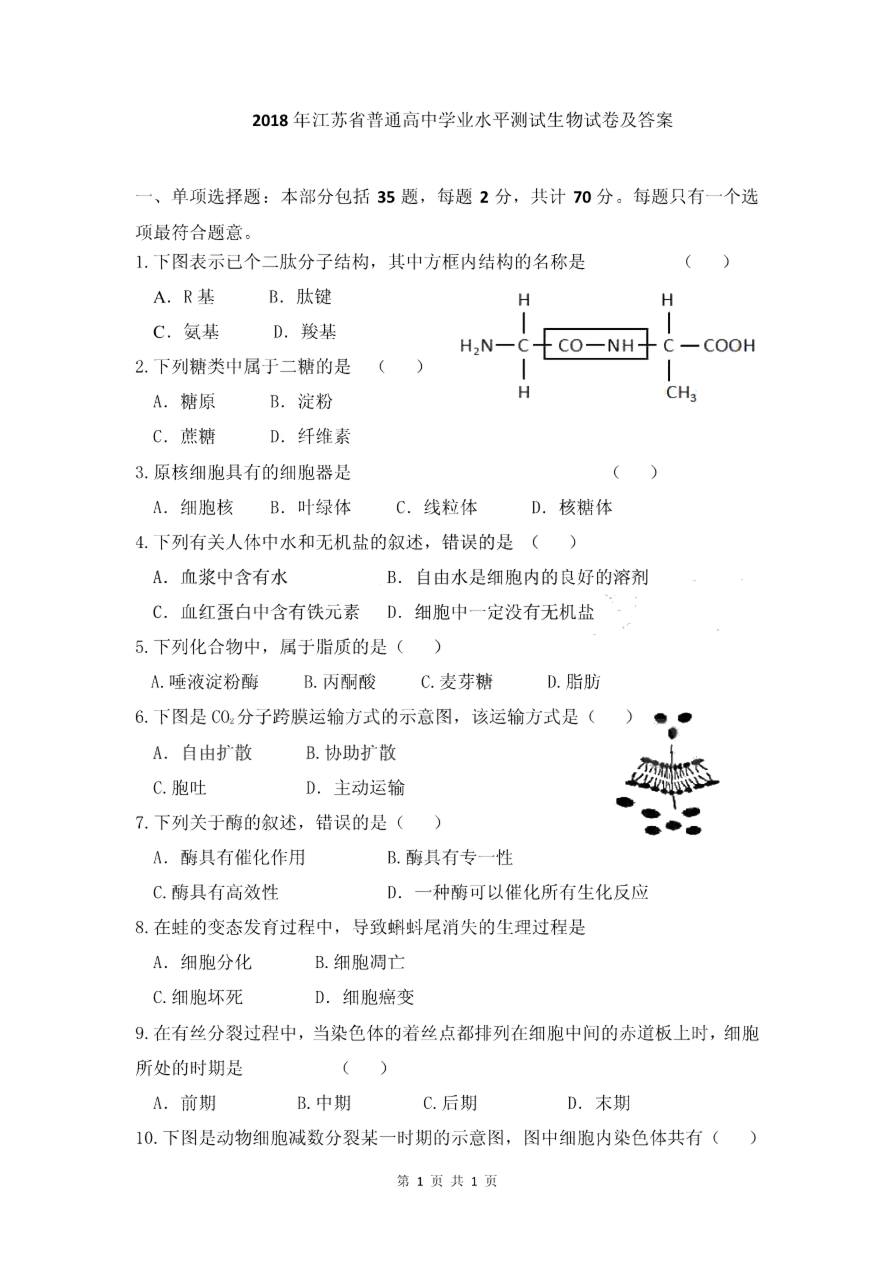 2018年江苏省普通高中学业水平测试生物试题