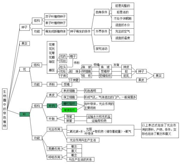中考生物知识点结构图分类整理:生物圈中的绿色植物