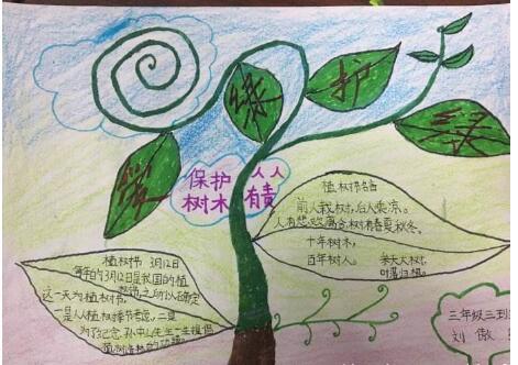 北京小学三年级关于树木手抄报