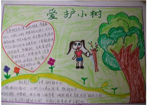 北京小学二年级关于树木手抄报图片