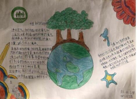 北京小学四年级关于树木手抄报