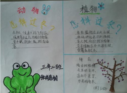 北京小学三年级关于花草的手抄报