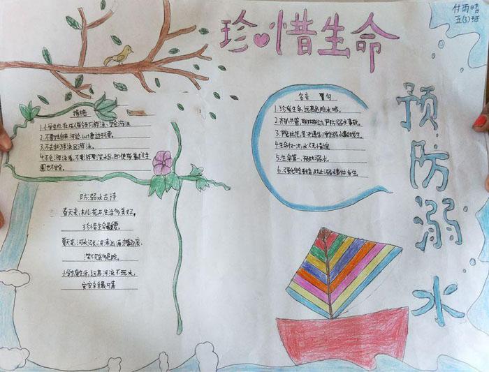 北京小学关于生命的手抄报图片