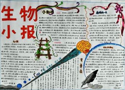 北京小学生物手抄报图片