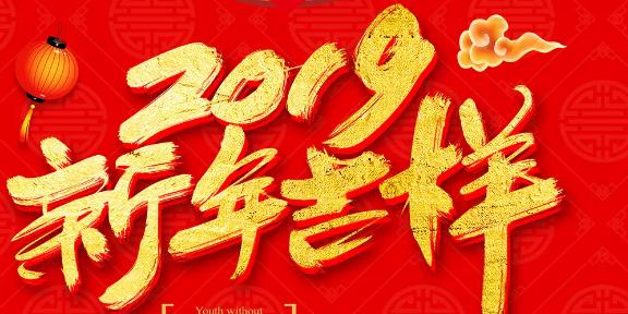 2019年过春节作文300字