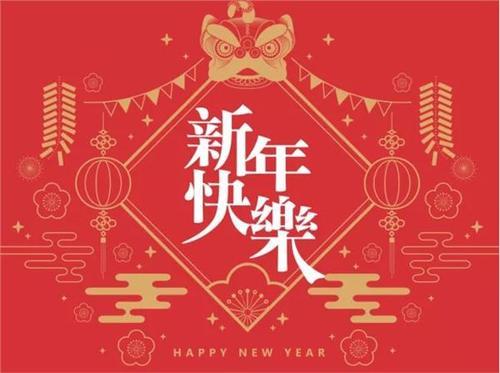 2019年六年级春节日记500字2篇