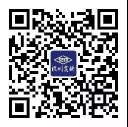 2019年深圳实验学校高中部招生咨询会