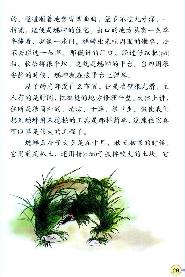 深圳四年级上册语文蟋蟀的住宅课文