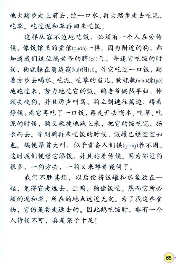深圳四年级上册语文白鹅课文