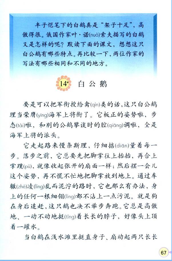 深圳四年级上册语文白公鹅课文