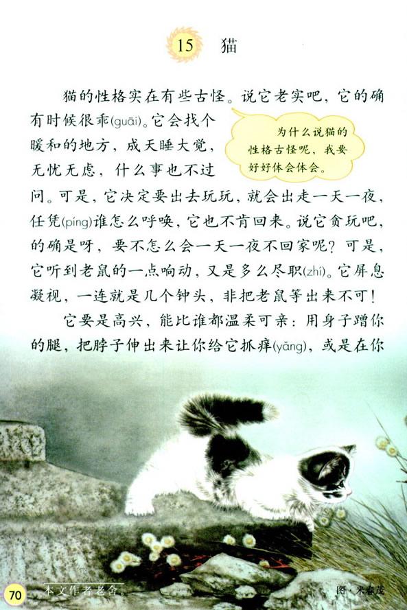深圳四年级上册语文猫课文