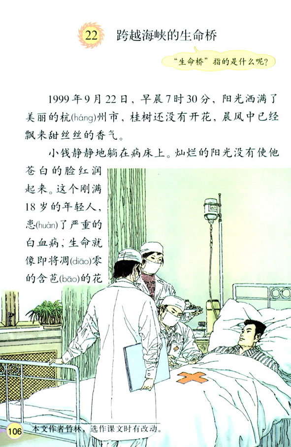 深圳四年级上册语文跨越海峡的生命桥课文