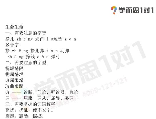 深圳四年级下册语文生命生命知识点