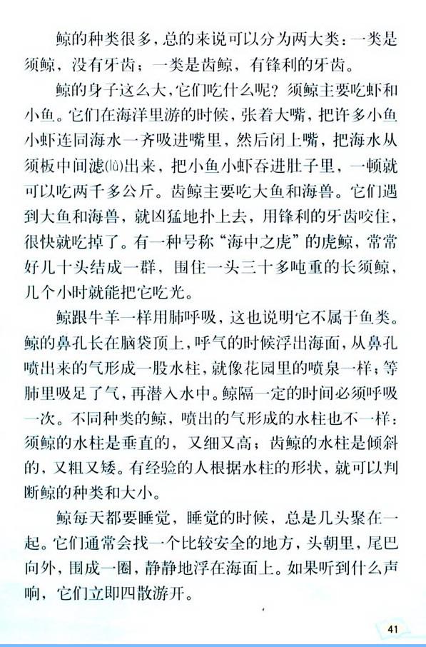 深圳五年级上册语文鲸课文