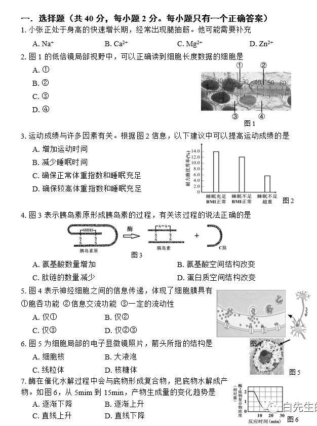 2020年上海闵行区高三一模生物试题第1页