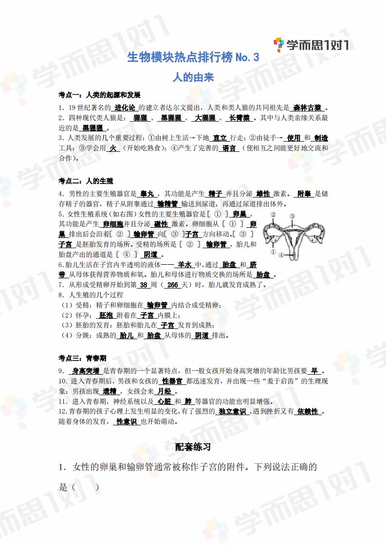 2020年深圳生地会考生物热点模块NO.3―人的由来