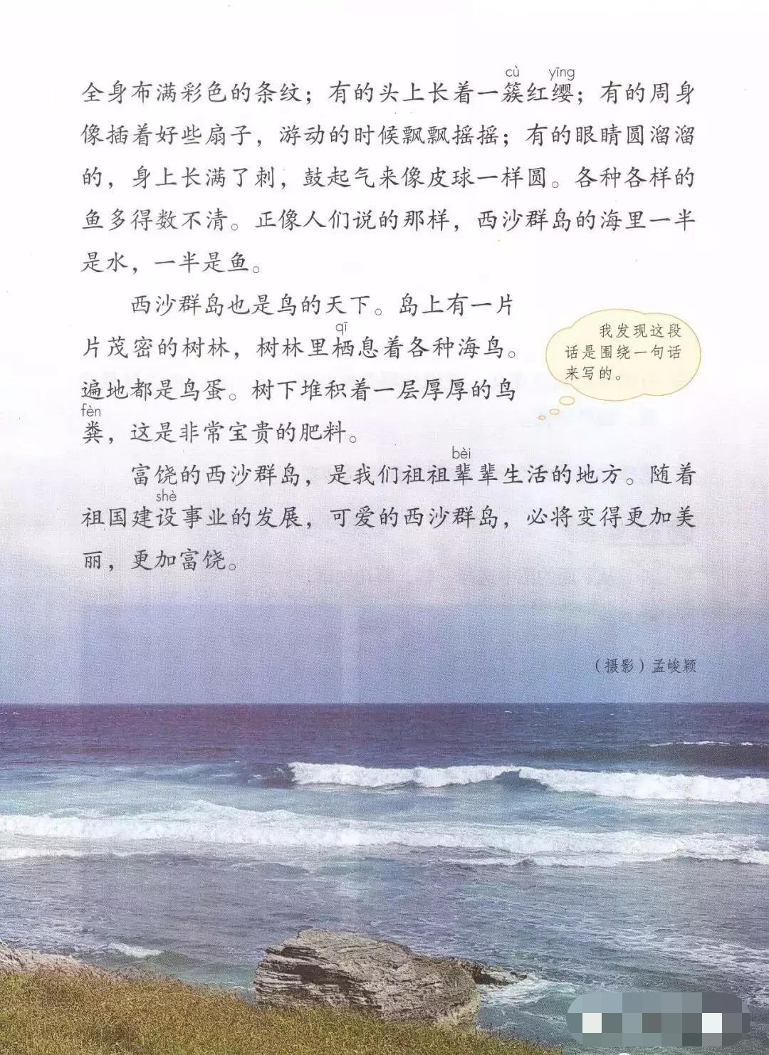 部编版三年级上册第18课《富饶的西沙群岛》知识点