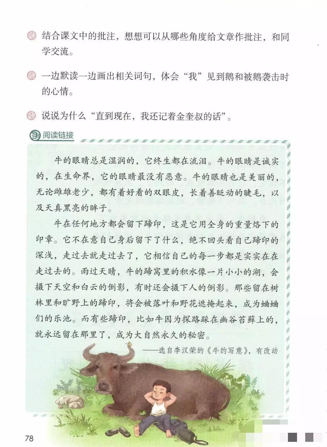 部编版四年级上册第18课《牛和鹅》知识点